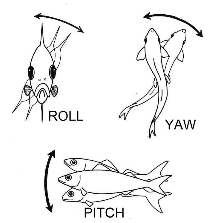 Pitch, Roll and Yaw